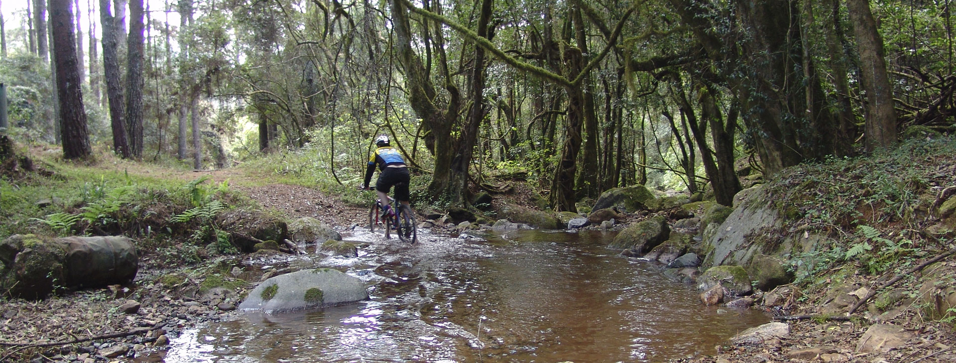 Magoebaskloof hosts various mountain biking events every year and has various biking trails marked by the Magoebaskloof Tourism Association.